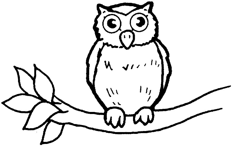 Go Back > Gallery For > Simple Owl Body Outline